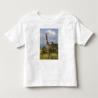 Kenya: Lewa Wildlife Conservancy, reticulated Toddler T-shirt
