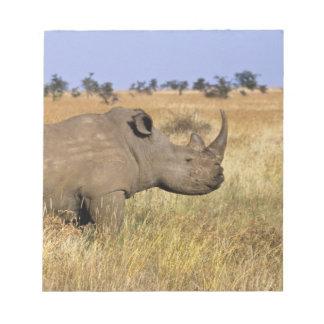 Kenya: Lewa Wildlife Conservancy, white Notepad