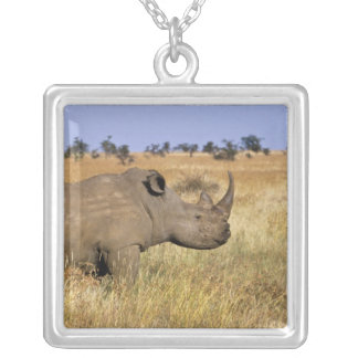 Kenya: Lewa Wildlife Conservancy, white Silver Plated Necklace