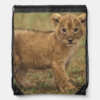Kenya. Lion Cub (Panthera Leo) Drawstring Bag