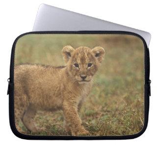 Kenya. Lion Cub (Panthera Leo) Laptop Sleeve