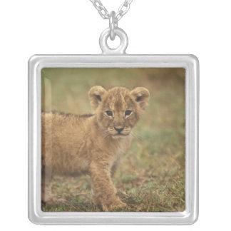 Kenya. Lion Cub (Panthera Leo) Silver Plated Necklace