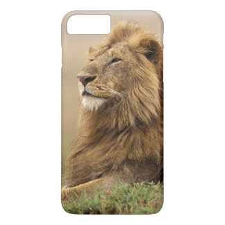 Kenya, Masai Mara. Adult male lion on termite iPhone 8 Plus/7 Plus Case