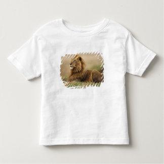Kenya, Masai Mara. Adult male lion on termite Toddler T-shirt