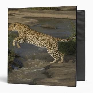 Kenya, Masai Mara Game Reserve. African 4 Vinyl Binders