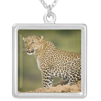 Kenya, Masai Mara Game Reserve. African Leopard Silver Plated Necklace