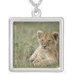 Kenya, Masai Mara Game Reserve. African Lion Square Pendant Necklace