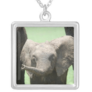 Kenya:  Masai Mara Game Reserve (also known as Square Pendant Necklace