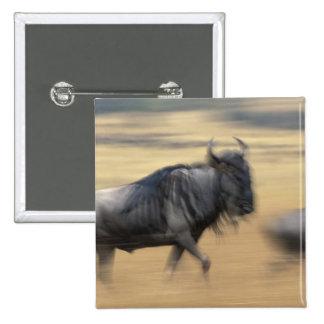 Kenya, Masai Mara Game Reserve, Blurred image 2 Inch Square Button
