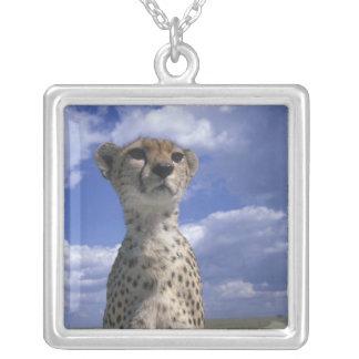 Kenya, Masai Mara Game Reserve, Close-up Silver Plated Necklace