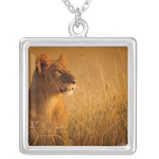 Kenya: Masai Mara Game Reserve, head of female Silver Plated Necklace