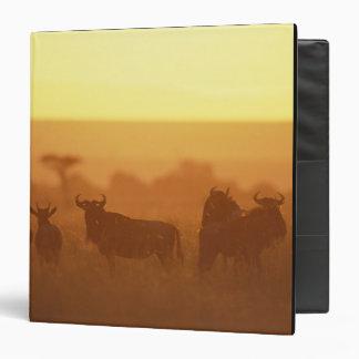 Kenya, Masai Mara Game Reserve, Herd of Vinyl Binders