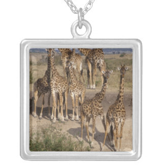 Kenya: Masai Mara Game Reserve herd of one dozen Silver Plated Necklace
