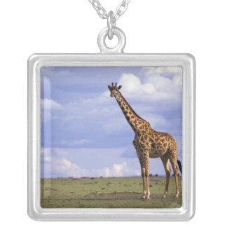Kenya, Masai Mara Game Reserve. Kenyan Giraffe Silver Plated Necklace