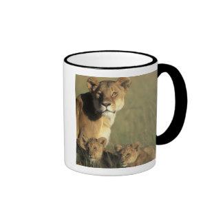 Kenya, Masai Mara Game Reserve, Lion cubs Ringer Coffee Mug