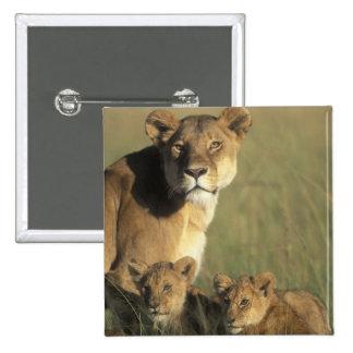 Kenya, Masai Mara Game Reserve, Lion cubs Pinback Button