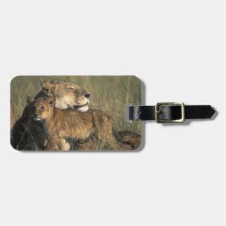 Kenya, Masai Mara Game Reserve, Lioness Bag Tag