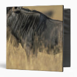 Kenya, Masai Mara Game Reserve, Wildebeest Vinyl Binder