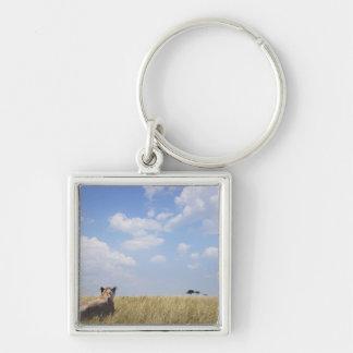 Kenya, Masai Mara Keychain