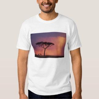 Kenya: Masai Mara National Park, Sunset. T-Shirt