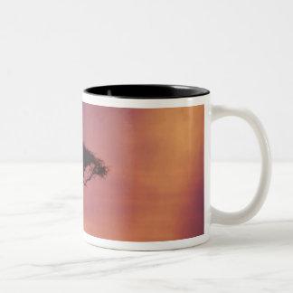 Kenya: Masai Mara National Park, Sunset. Two-Tone Coffee Mug