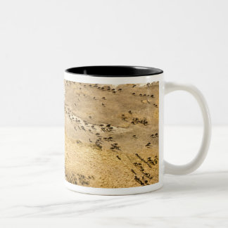 Kenya: Masai Mara National Reserve, Mara Two-Tone Coffee Mug