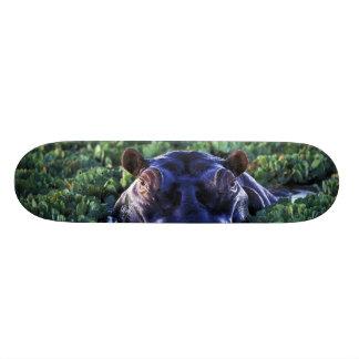 Kenya, Masai Mara National Reserve. Custom Skate Board