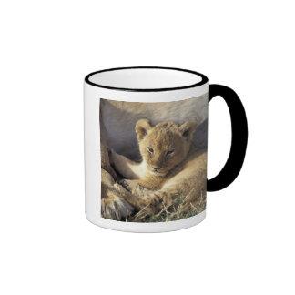 Kenya, Masai Mara. Six week old Lion cub Ringer Coffee Mug