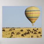 Kenya, Masai Mara. Tourists ride hot air balloon Poster