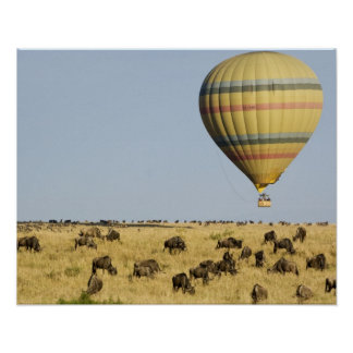 Kenya, Masai Mara. Tourists ride hot air balloon Poster