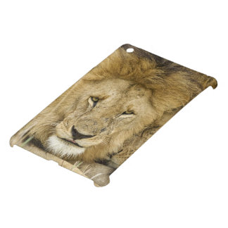 Kenya, Masai Mara. Two lions resting face to iPad Mini Cases