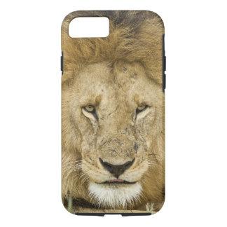 Kenya, Masai Mara. Two lions resting face to iPhone 7 Case