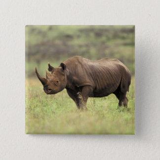 Kenya, Nairobi National Park. Black Rhinoceros Button