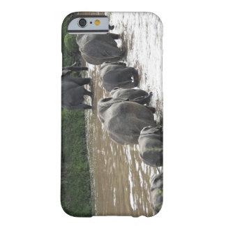 Kenya, No Water No Life Mara River Expedition, 2 Barely There iPhone 6 Case