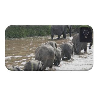 Kenya, No Water No Life Mara River Expedition, 2 iPhone 4 Case