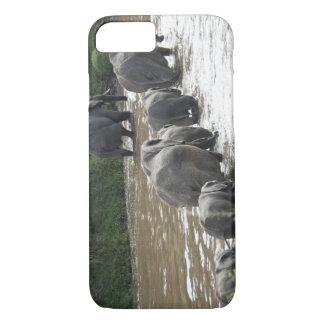 Kenya, No Water No Life Mara River Expedition, 2 iPhone 7 Case