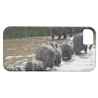 Kenya, No Water No Life Mara River Expedition, 2 iPhone SE/5/5s Case
