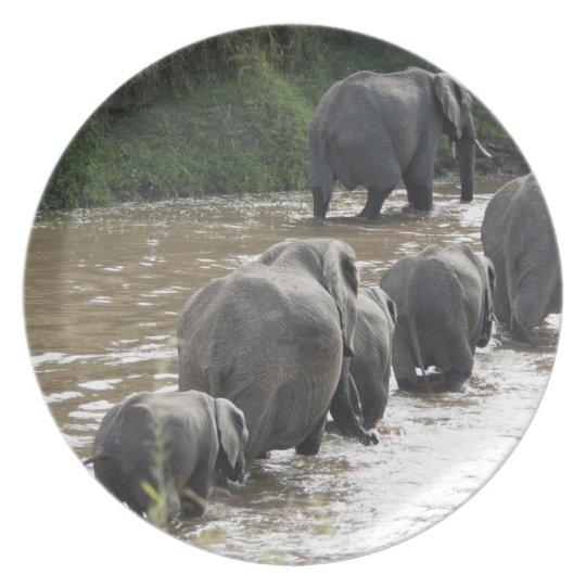 Kenya, No Water No Life Mara River Expedition, 2 Melamine Plate
