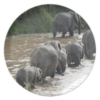 Kenya, No Water No Life Mara River Expedition, 2 Plate