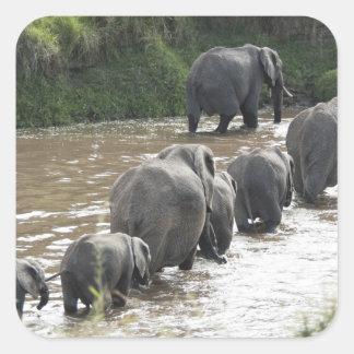 Kenya, No Water No Life Mara River Expedition, 2 Square Sticker