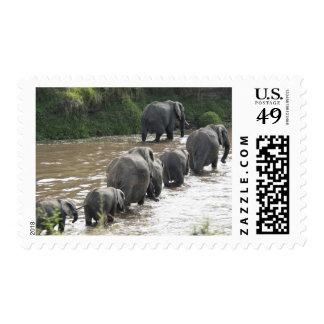 Kenya, No Water No Life Mara River Expedition, 2 Stamp