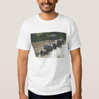 Kenya, No Water No Life Mara River Expedition, 2 T-Shirt