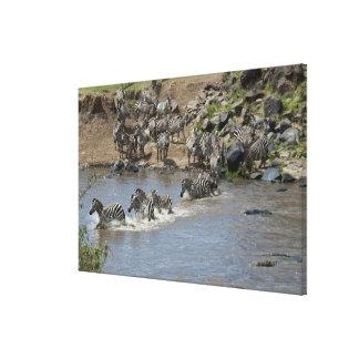 Kenya, No Water No Life Mara River Expedition, 3 Canvas Print