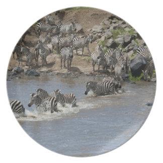 Kenya, No Water No Life Mara River Expedition, 3 Plate