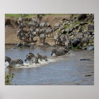 Kenya, No Water No Life Mara River Expedition, 3 Posters
