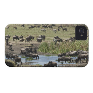 Kenya, No Water No Life Mara River Expedition, 4 Case-Mate iPhone 4 Case