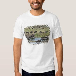 Kenya, No Water No Life Mara River Expedition, 4 T-Shirt