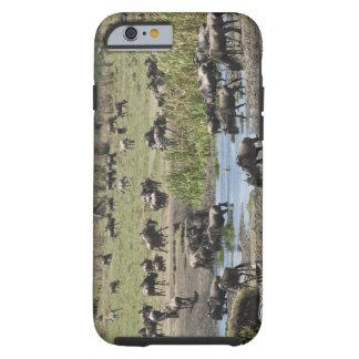 Kenya, No Water No Life Mara River Expedition, 4 Tough iPhone 6 Case