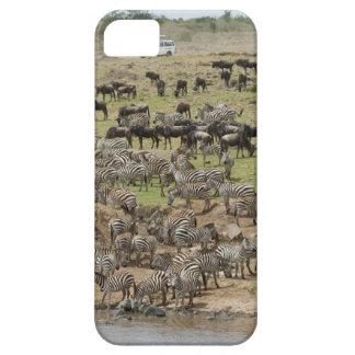 Kenya, No Water No Life Mara River Expedition, 5 iPhone SE/5/5s Case