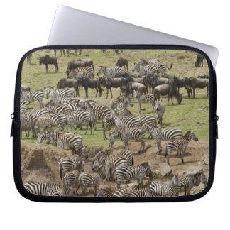 Kenya, No Water No Life Mara River Expedition, 5 Laptop Sleeve